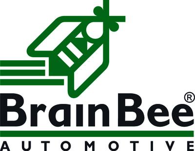 brainbee